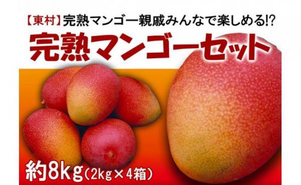沖縄県東村(ひがしそん)「ふるさと納税」お礼品に『東村特産完熟マンゴーセット 約8kg』を新たに追加いたしました。画像