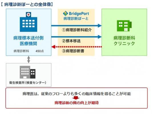 ブリッジポート株式会社