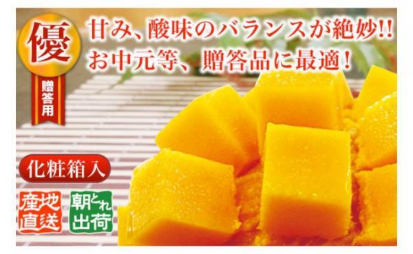 沖縄県国頭村(くにがみそん)「ふるさと納税」お礼品に『農家さん直送!国頭村産サンサンマンゴー 約2kg (4~6玉)』を新たに追加いたしました。画像