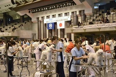 一般社団法人 全日本動物専門教育協会