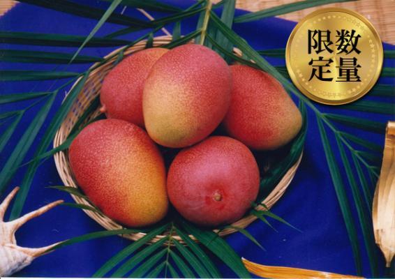 沖縄県東村(ひがしそん)「ふるさと納税」お礼品に『東村特産マンゴー園の完熟マンゴー約2kg(4~6玉)【2018年発送】』を新たに追加いたしました画像