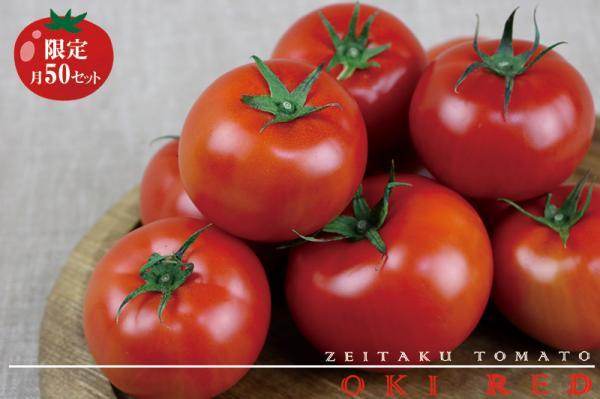 沖縄県東村(ひがしそん)「ふるさと納税」お礼品に『東村で採れた ぜいたくトマト 約1.5キロ』を新たに追加いたしました画像