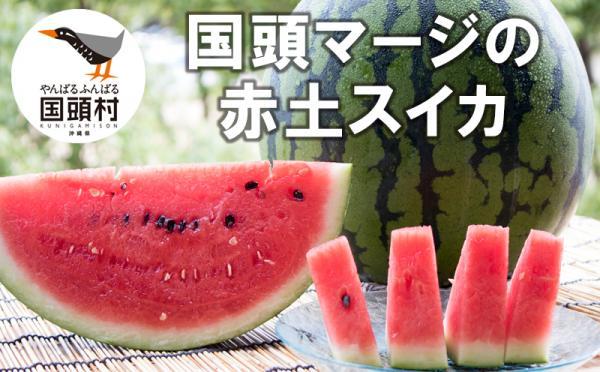 沖縄県国頭村(くにがみそん)「ふるさと納税」お礼品に『国頭マージ 赤土スイカ(5~7Kg×2玉)』を新たに追加いたしました画像