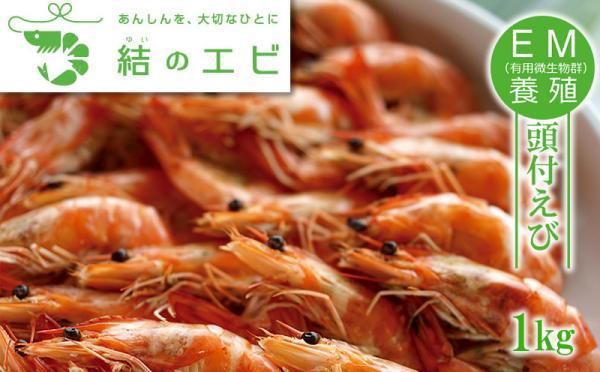 沖縄県北中城村(きたなかぐすくそん)「ふるさと納税」お礼品に『EM養殖「結のエビ」頭付エビ1kg冷凍』を新たに追加いたしました画像