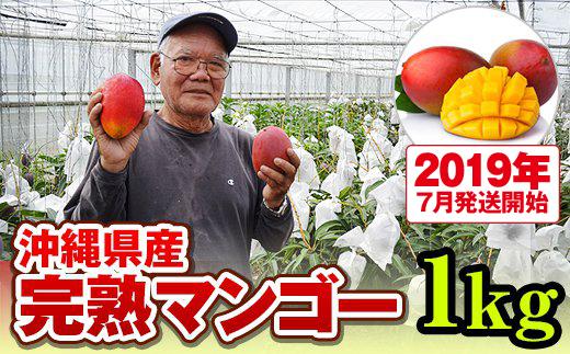 沖縄県南風原町(はえばるちょう)「ふるさと納税」お礼品に『トカテン農園 マンゴー1kg(2019年7月発送開始)』を新たに追加いたしました画像