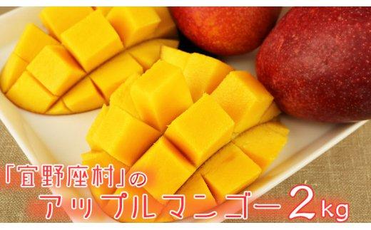 沖縄県宜野座村(ぎのざそん)「ふるさと納税」お礼品に『マンゴーの拠点産地「宜野座村」のアップルマンゴー(約2kg)』を新たに追加いたしました画像