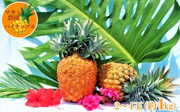 沖縄県大宜味村(おおぎみそん)「ふるさと納税」お礼品に『【2020年発送】マキシ農園パイナップルセット』を新たに追加いたしました画像