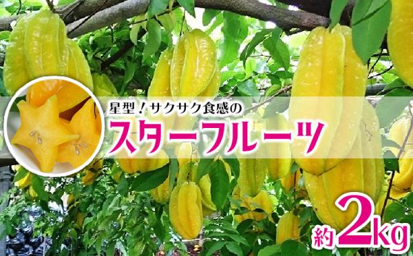沖縄県南風原町(はえばるちょう)「ふるさと納税」お礼品に『星型!サクサク食感のスターフルーツ 約2kg【2020年9月発送予定】』を新たに追加いたしました画像