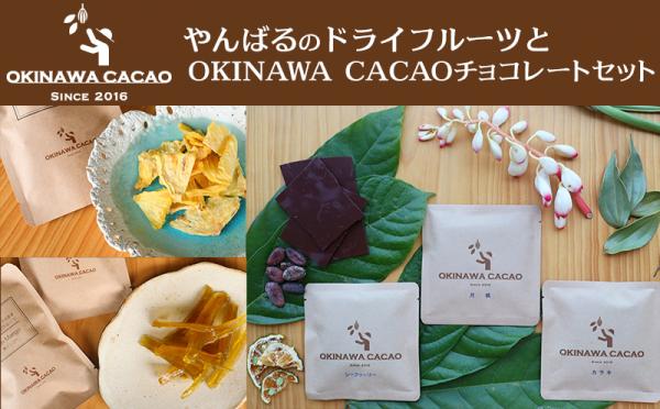 沖縄県大宜味村(おおぎみそん)「ふるさと納税」お礼品に『【OKINAWACACAO】やんばるのドライフルーツとOKINAWACACAOチョコレートのセット』を新たに追加いたしました画像