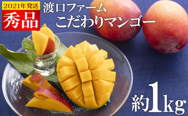 沖縄県八重瀬町(やえせちょう)「ふるさと納税」お礼品に『【2021年発送】渡口ファームのこだわりマンゴー約1kg〈秀品〉』を新たに追加いたしました画像