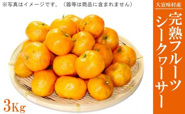 沖縄県大宜味村(おおぎみそん)「ふるさと納税」お礼品に『【2020年12月より順次発送】完熟フルーツシークワーサー 3Kg』を新たに追加いたしました画像