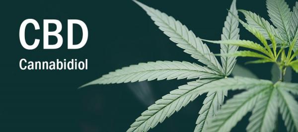 大麻から抽出されたサプリメントCBD製品が2020年7月20日から1ヶ月限定で15%OFFに! | ライフプラス通販株式会社 |  プレスリリース配信代行サービス『ドリームニュース』